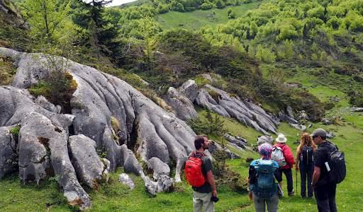 Lapiaz (réseau de fissures par dissolution des calcaires)